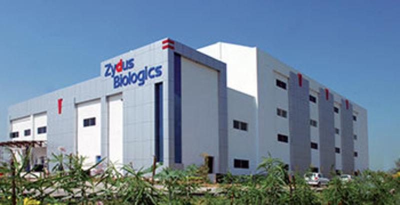 Zydus-Biologics-Ahmedabad