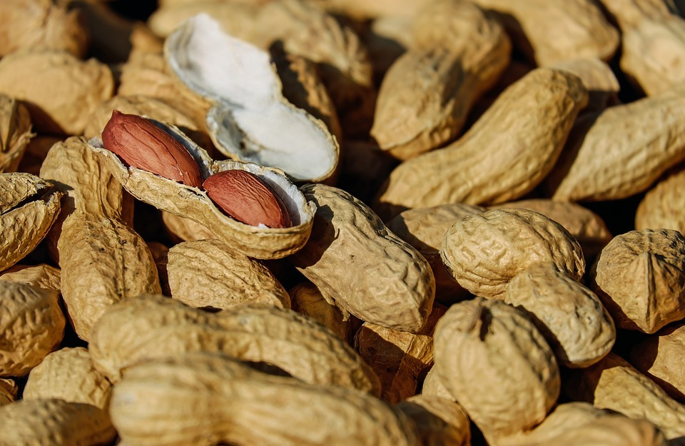 FDA's APAC panel votes in favour of Aimmune's peanut allergy candidate