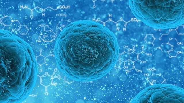 Image: Regeneron and Vyriad have collaborated to develop oncolytic virus-based treatments. Photo: courtesy of PublicDomainPictures from Pixabay.