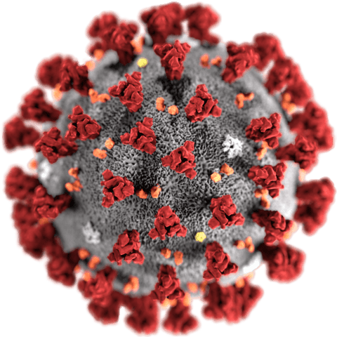 GSK, Clover collaborate to assess protein-based coronavirus vaccine candidate