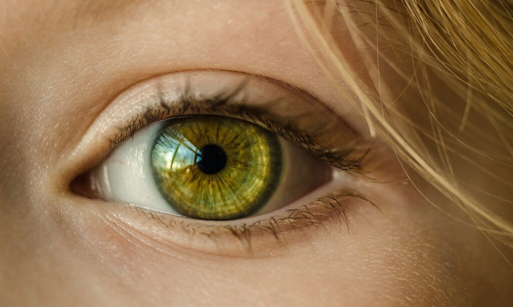 Intellia Therapeutics and SparingVision enter strategic collaboration to develop ocular therapies
